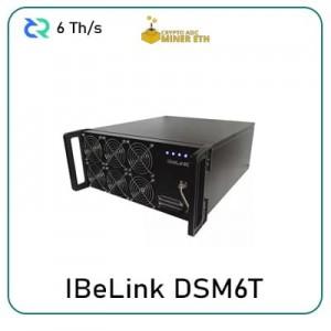 IBeLink-DSM6T